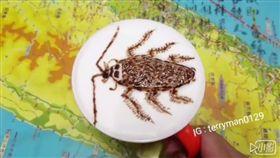 咖啡,拉花,蟑螂,小強/爆廢公社
