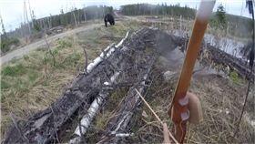 加拿大,打獵,獵人,黑熊,遇襲,危險,影片,錄影
