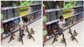 賣場,男童,恐龍玩具(圖/翻攝自爆料公社)