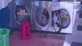 烘衣機,自助洗衣店,家長,嬉戲,玩耍,無視,鑽洗衣機