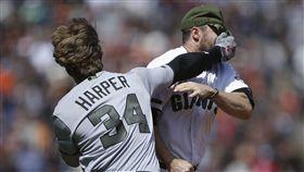 Bryce Harper和Hunter Strickland大打出手。