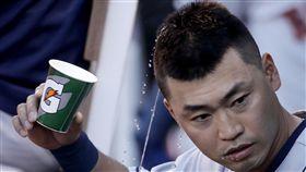 ▲休士頓太空人打出11連勝佳績,外野手青木宣親用水澆自己的頭。(圖/美聯社/達志影像)