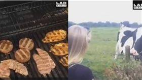 BBQ,烤肉,牛肉,牛 圖/翻攝自LADBIBLE