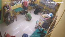 寵物美容師毆打狗_新北市動保處提供