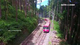 阿里山,森林,鐵路,景點,對高岳站,秘境,停靠,三角線,玉山
