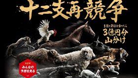 12生肖大賽跑(圖/翻攝自怪物彈珠官網)