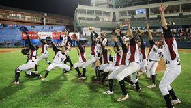 ▲花蓮縣獲得2017年U15亞洲盃國家隊組訓權。(圖/中華棒協提供)