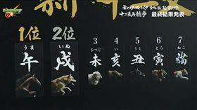 12生肖大賽跑(圖/翻攝自YouTube)