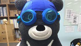 世大運,熊讚,台北,北市,吉祥物,運動,賽事,可愛,游泳,測試-翻攝自熊讚Bravo臉書粉專