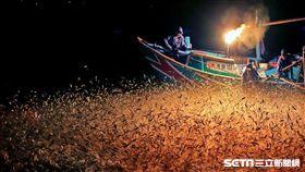 金山蹦火仔捕魚,漁港。(圖/北觀處提供)