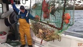 工作,高薪,螃蟹,帝王蟹,捕蟹人,阿拉斯加,白令海峽 (圖/翻攝自YouTube)