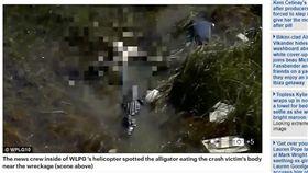 16:9 遺體被鱷魚吃了…美男違規一人亂開飛機 不幸墜毀當場身亡 圖/翻攝自《每日郵報》 http://www.dailymail.co.uk/news/article-4673848/Body-plane-crash-victim-EATEN-alligator.html