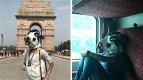 印度,牛,神聖,刑責,性侵,強暴,Sujatro Ghosh,面具,權益(圖/翻攝自ujatroghosh Instagram) https://www.instagram.com/p/BVxRKNwF6Lf/?taken-by=sujatroghosh