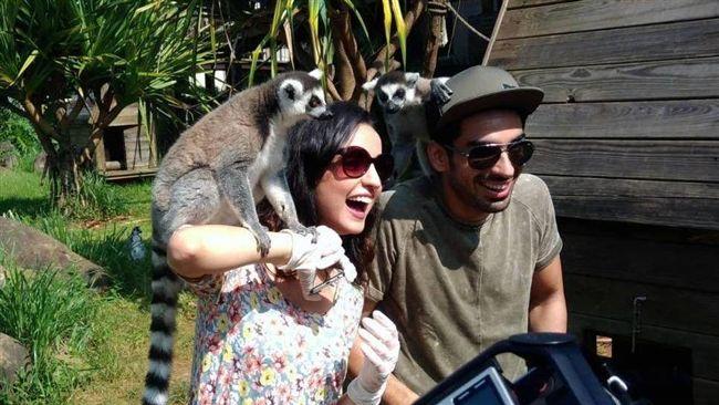 寶萊塢明星夫妻 六福村體驗猛獸籠車