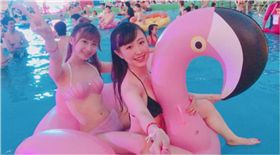 國際,日本,泳池,派對,游泳,夜間泳池,打卡,instagram,ig,hashtag