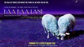 羊,電影,La La Land,樂來樂愛你,Baa Baa Land,吃草,Calm,冥想,動物 (圖/翻攝自calmdotcom官網)