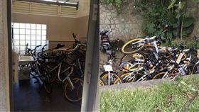 共享單車,腳踏車,oBike,擾民,占用,停車位,新北市,觀音山,爬山,亂丟,公廁 圖/翻攝自爆料公社、北管處