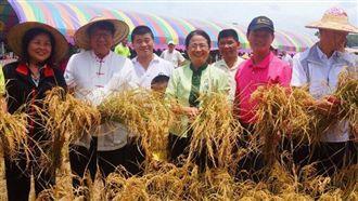 東森山林推小農之旅 體驗草編打稻穀