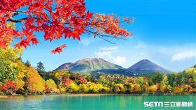 賞楓,楓葉,北海道阿寒湖。(圖/易遊網提供)