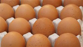 雞蛋/pixabay