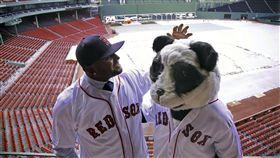▲山多瓦當然會繡上他的功夫熊貓「 Kung Fu Panda」綽號。(圖/美聯社/達志影像)