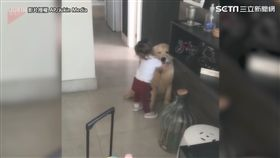 小主人要去上學讓狗狗好難過 她下一秒抱緊處理超溫馨