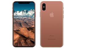 據傳iPhone 8金色款式會是腮紅金。(圖/翻攝自Benjamin Geskin推特)