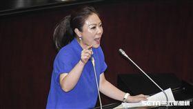 立法院第二次臨時會,全院委員談話會,李彥秀 圖/記者林敬旻攝