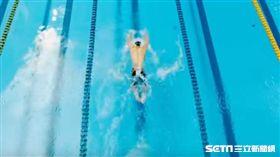 世大運 游泳
