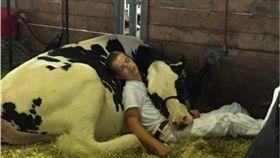 牛,男孩,睡覺,美國,愛荷華州,Mitchell Miner 圖/翻攝自Bored panda
