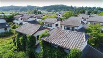 311東日本大地震杳無人跡的小鎮,慢慢地被綠色植物蓋過建築