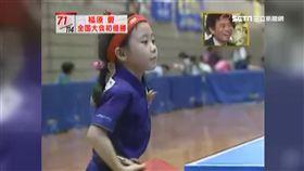 福原愛,桌球,訓練,童年