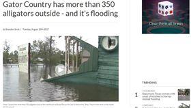 16:9 只差30公分!休士頓大淹水 居民憂鱷魚「出門逛大街」 圖/翻攝自kfdm http://kfdm.com/weather/hurricane-stories/gator-country-has-more-than-350-alligators-and-its-flooded