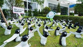 520企鵝展愛行動。(圖/晶宴會館提供)