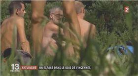 巴黎,法國,裸體,天體,裸露,公園,自然