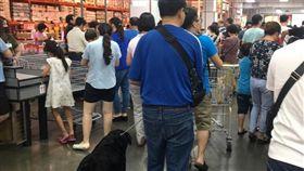 盲人,導盲犬,假裝,愛心,濫用,超市 圖/翻攝自臉書爆料公社