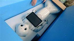 Pepper,機器人(圖/翻攝自推特)