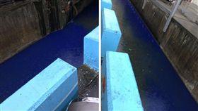 排水溝,彰化,藍色,染料,印刷工廠,汙染,排放,廢水 (圖/翻攝自彰化人大小事臉書)