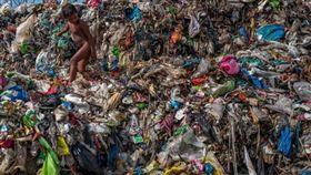 海洋垃圾,微塑料,纖維,垃圾,海鮮,啤酒,蜂蜜,水,科學家,海鮮 圖翻攝自Orb Media官網 https://goo.gl/U6KE1u