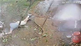 男子險遭樹根擊中。