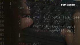 駭客,電腦,網路
