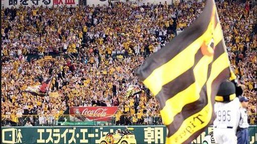 阪神甲子園球場(圖/翻攝自推特)