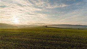 草地,秋天,公園,早晨,天氣 圖/翻攝自Pixabay