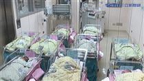 「請假精算師」公僕3年上7天班領36萬 -嬰兒-新生兒-