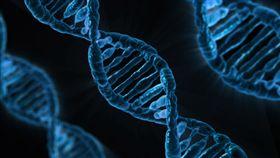 -DNA-基因-(圖/pixabay)