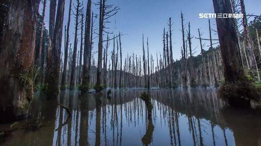 砰!水漾森林露營區枯樹砸帳篷 3遊客傷