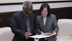 蔡英文總統接見教廷「促進整體人類發展部」部長涂克森(Peter Turkson)樞機主教。(總統府提供)