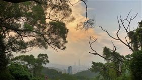 北部入夜秋意浮現受東北風影響台灣北部白天氣溫稍降,但台北市區仍感受不到明顯秋意,到了傍晚氣溫下降較明顯,北市近郊山區秋意明顯浮現。中央社記者王飛華攝 106年9月29日