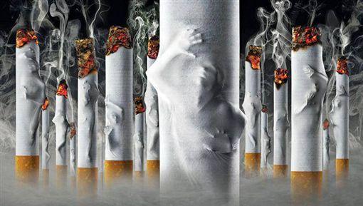 -抽菸-香菸-戒菸-菸品-(圖/翻攝自董氏基金會 菸害防制中心臉書)