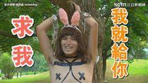 奔月傳說大集合!崩壞玉兔嚇到吃手手